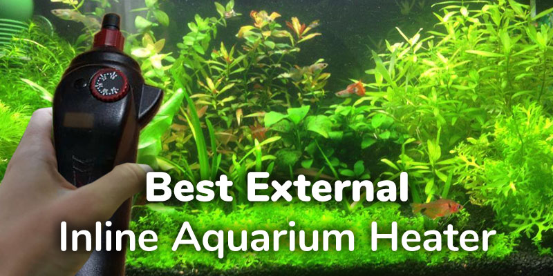 best-external-inline-aquarium-heater