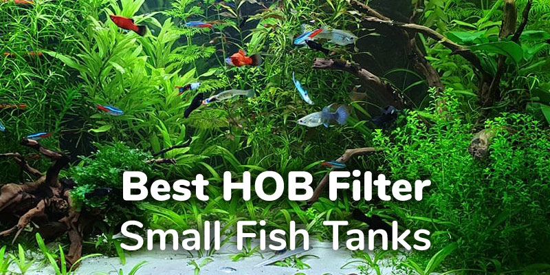 best-small-hob-filter