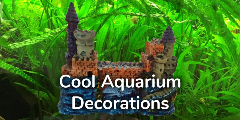 cool-aquarium-decorations