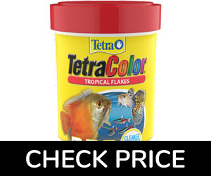 tetra-color-tropical-flakes-food-guppy
